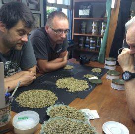 świeża kawa warszawa